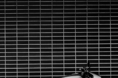 Harley-Davidson-LiveWire-17